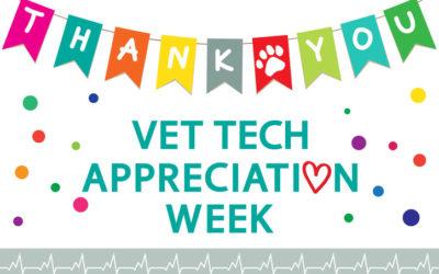 3 Reasons We Appreciate Our Veterinary Technicians
